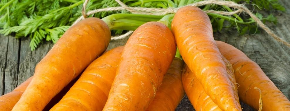 foods prevent hair loss