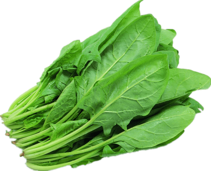 top 10 healthy super food for hair growth, healthy food to prevent hair loss