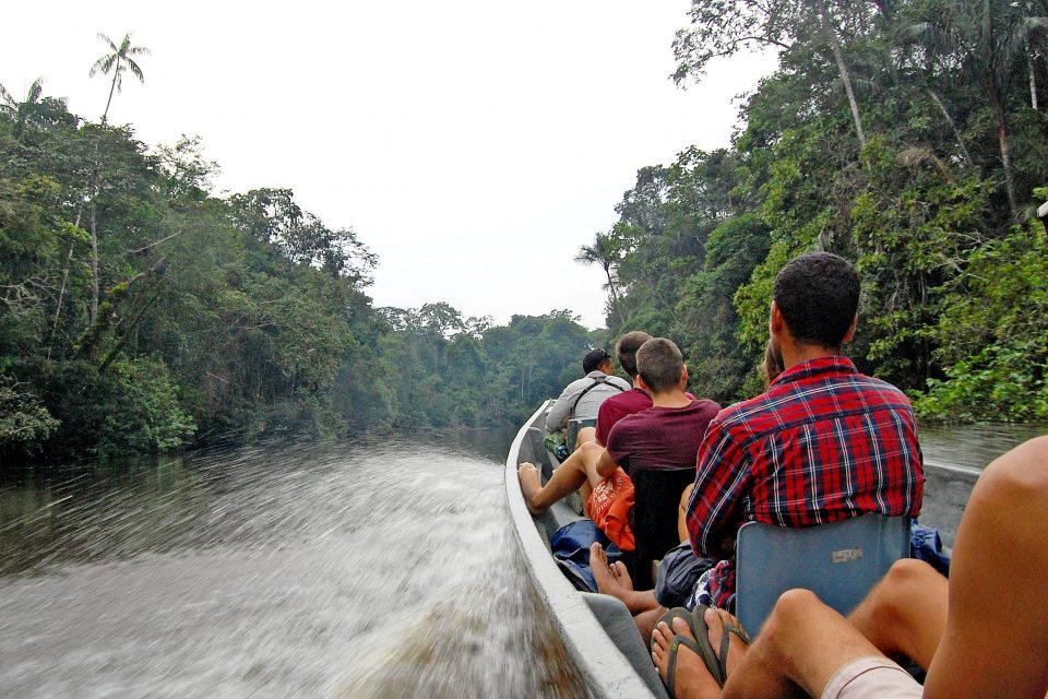 biggest wildlife reserve, Amazon forest and wildlife reserves