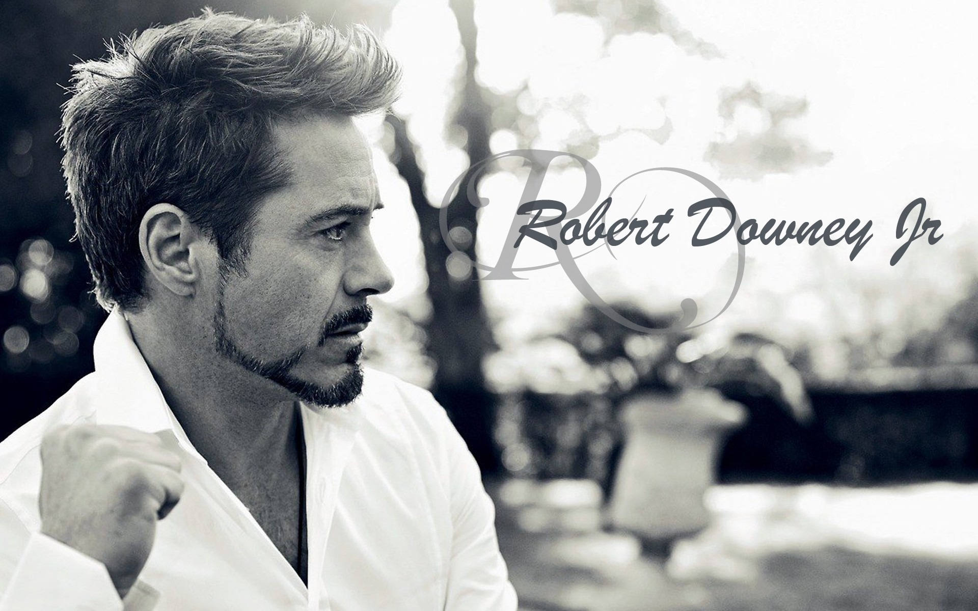 top 10 current richest actor in the world 2020, Robert Downey