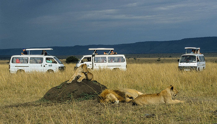Top 10 Wildlife Reserves in the world, Masai Mara game Reserve