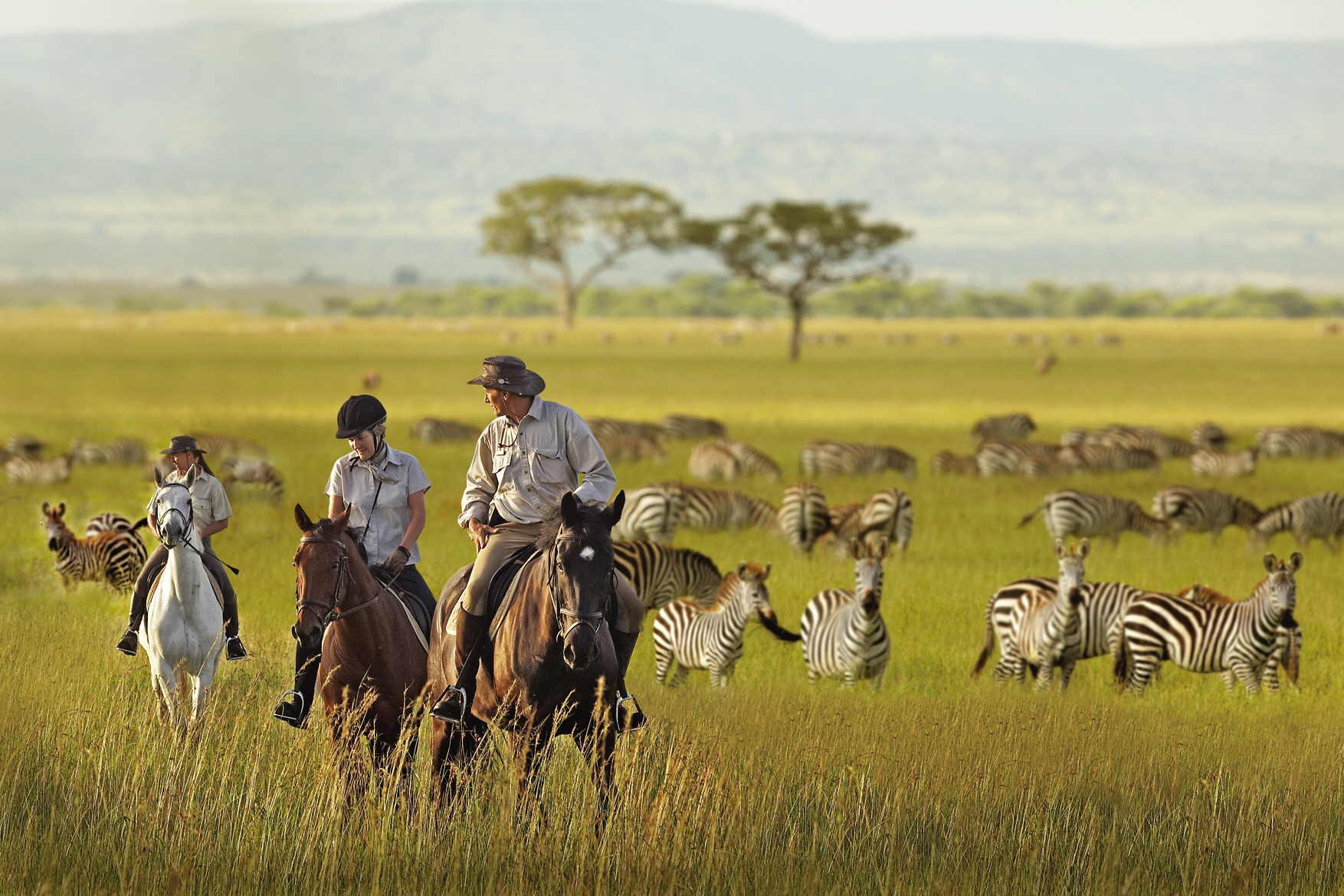 Top 10 Wildlife Reserves in the world, Serengiti national park